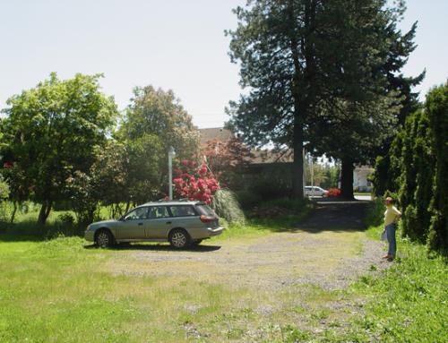 ALTA Surveys2